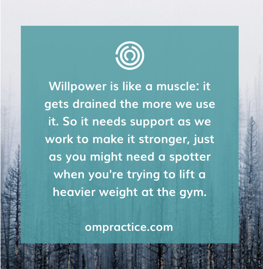 willpower is like a muscle: it gets drained the more we use it. So it needs support as we work to make it stronger, just as you might need a spotter when you're trying to lift a heavier weight at the gym.